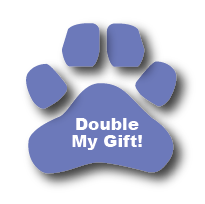 double-my-gift button
