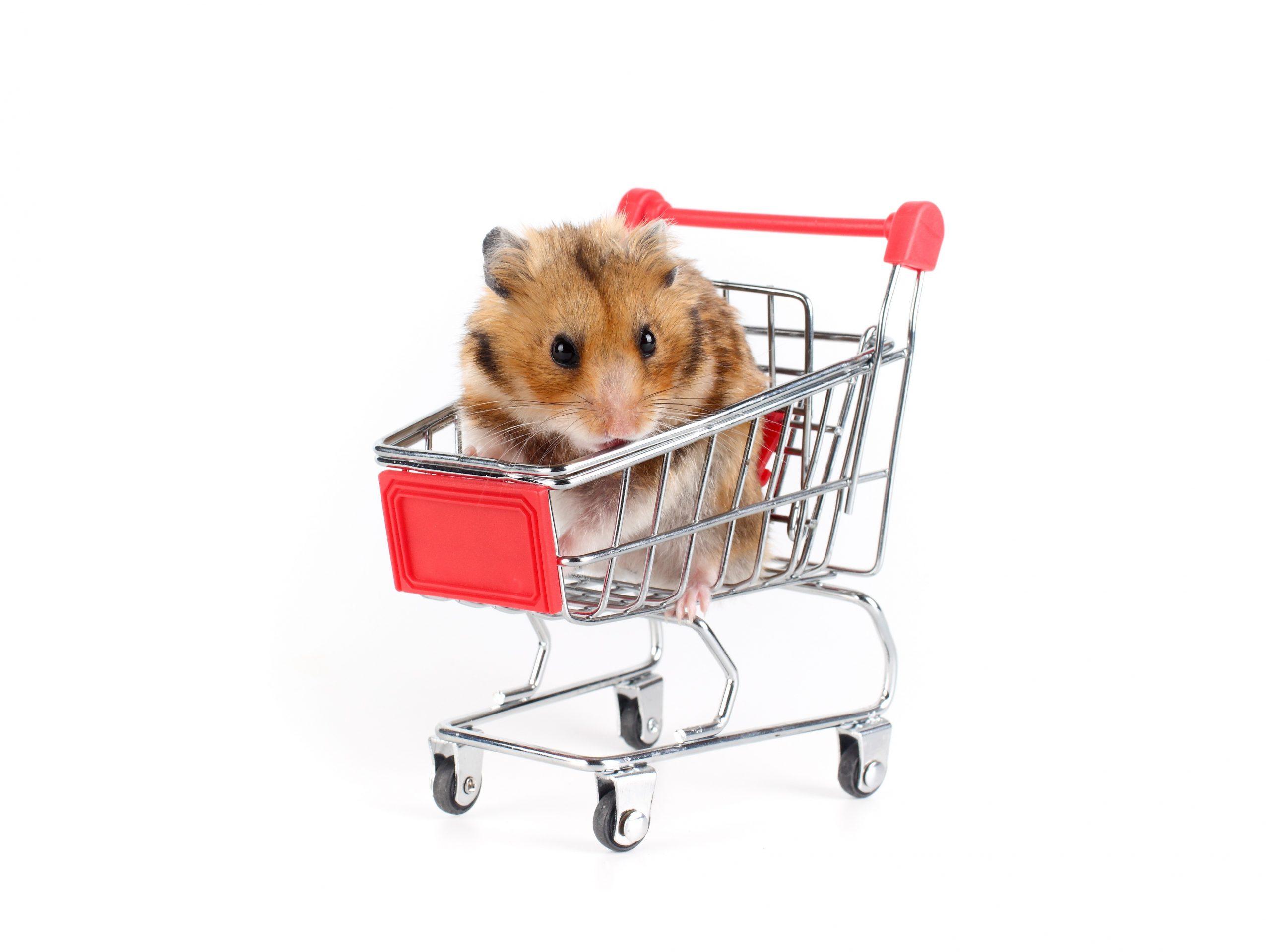 hamster-basket