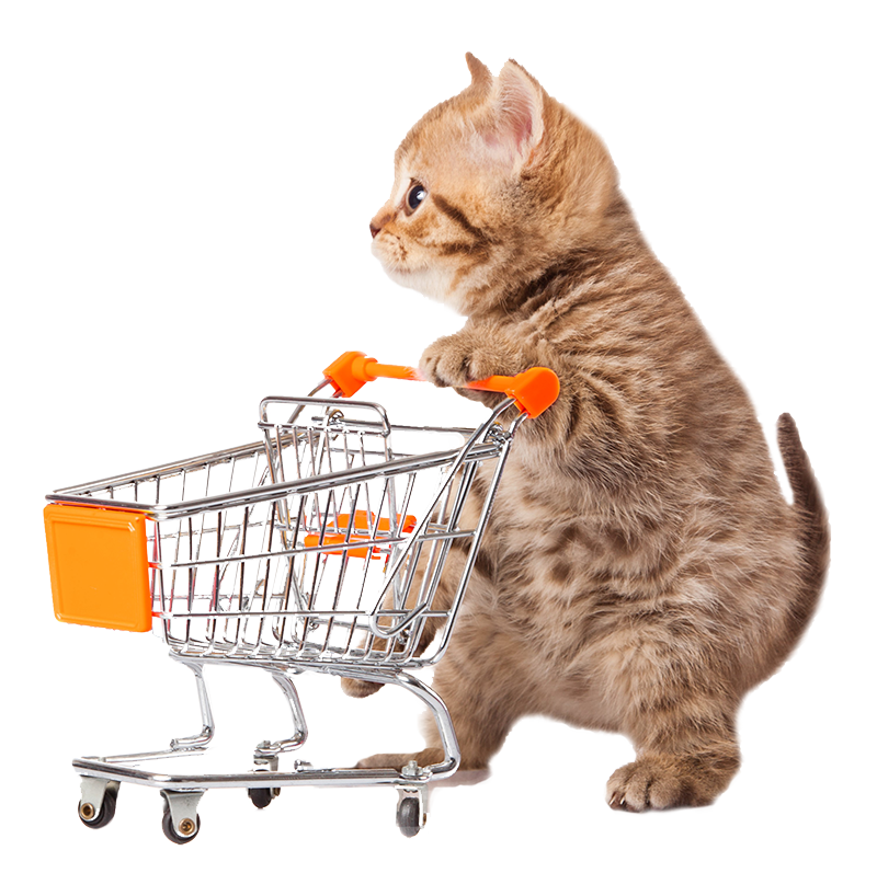 kitty-shopping-basket