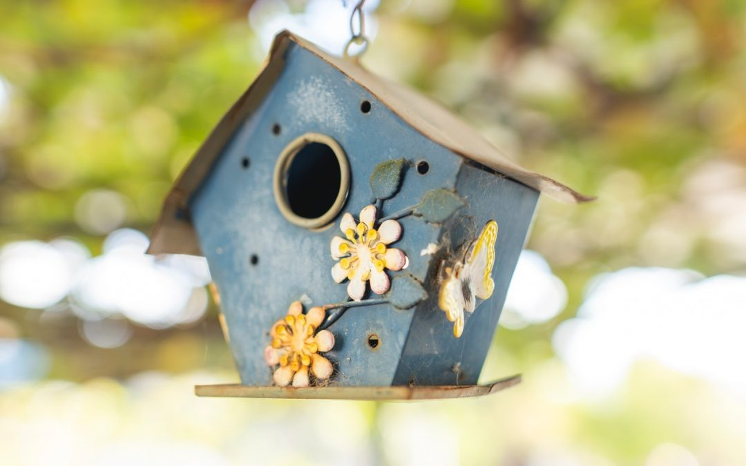 Virtual Birdhouse Auction